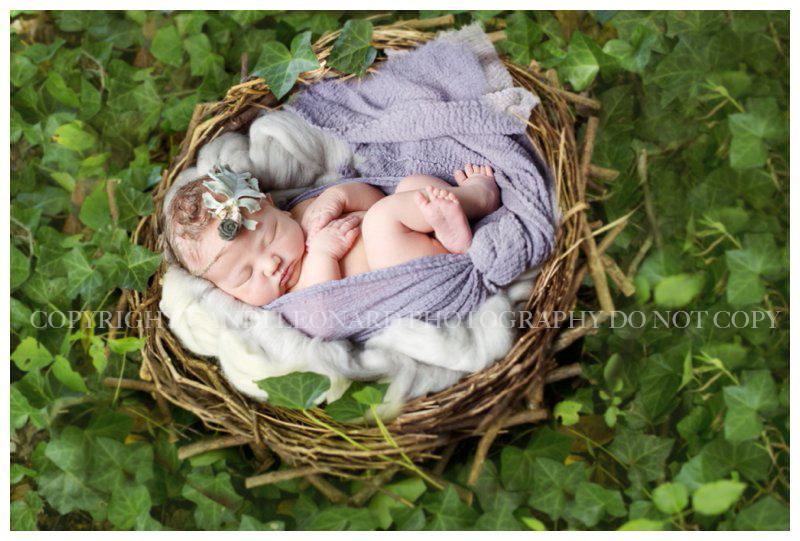 Nature_newborn_asheboro_NC__0246