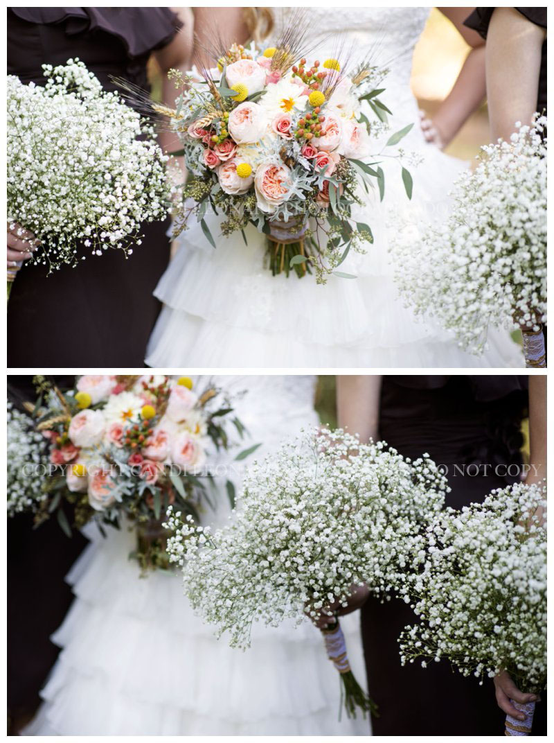 Country_wedding_Asheboro_NC_0536