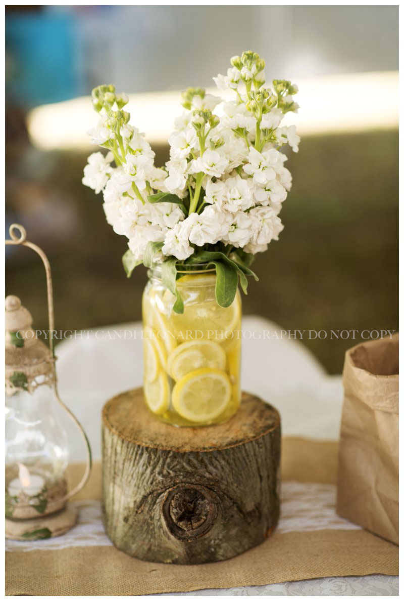 Country_wedding_Asheboro_NC_0541