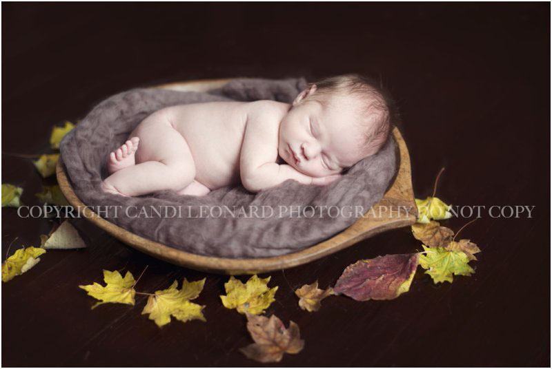 Newborn_photographer_asheboro_NC_0714