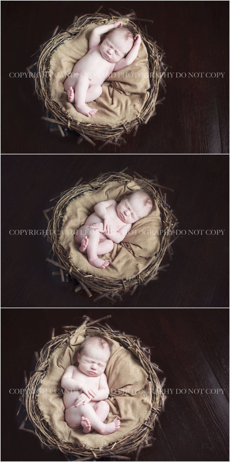 Newborn_photographer_asheboro_NC_0715