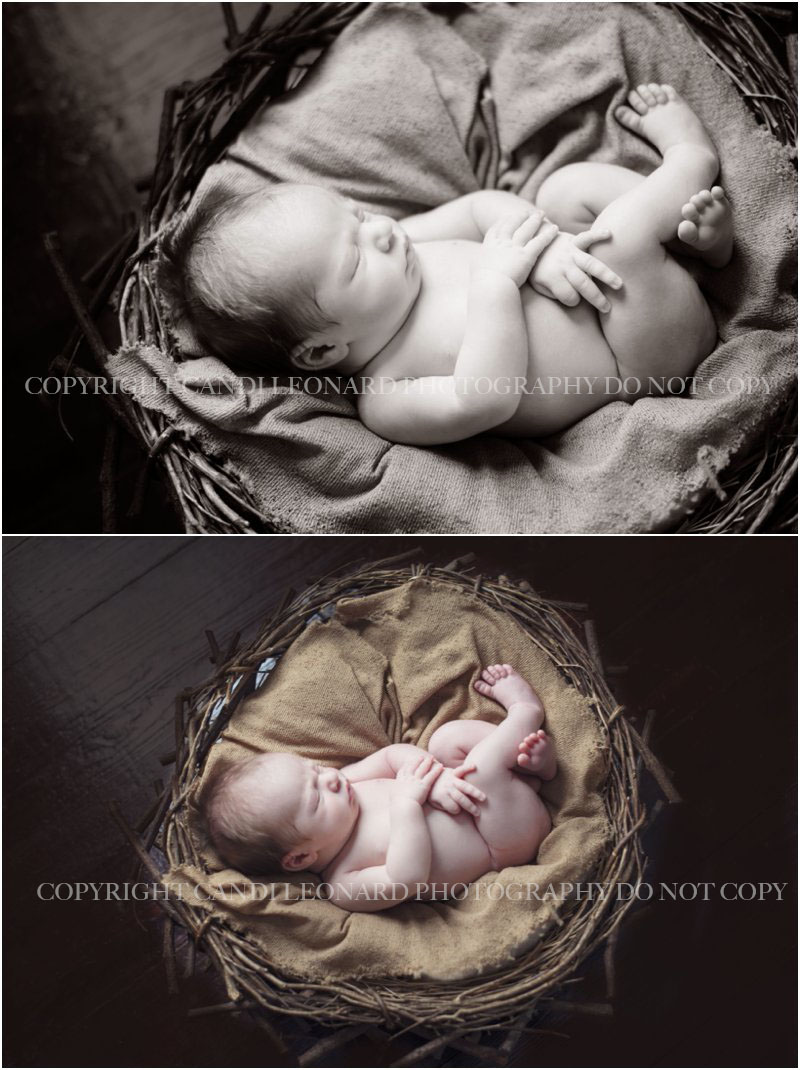 Newborn_photographer_asheboro_NC_0717