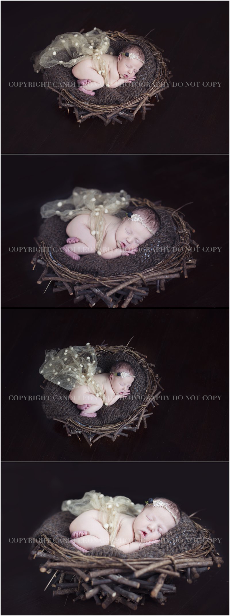 Asheboro_NC_newborn_photographer_1004