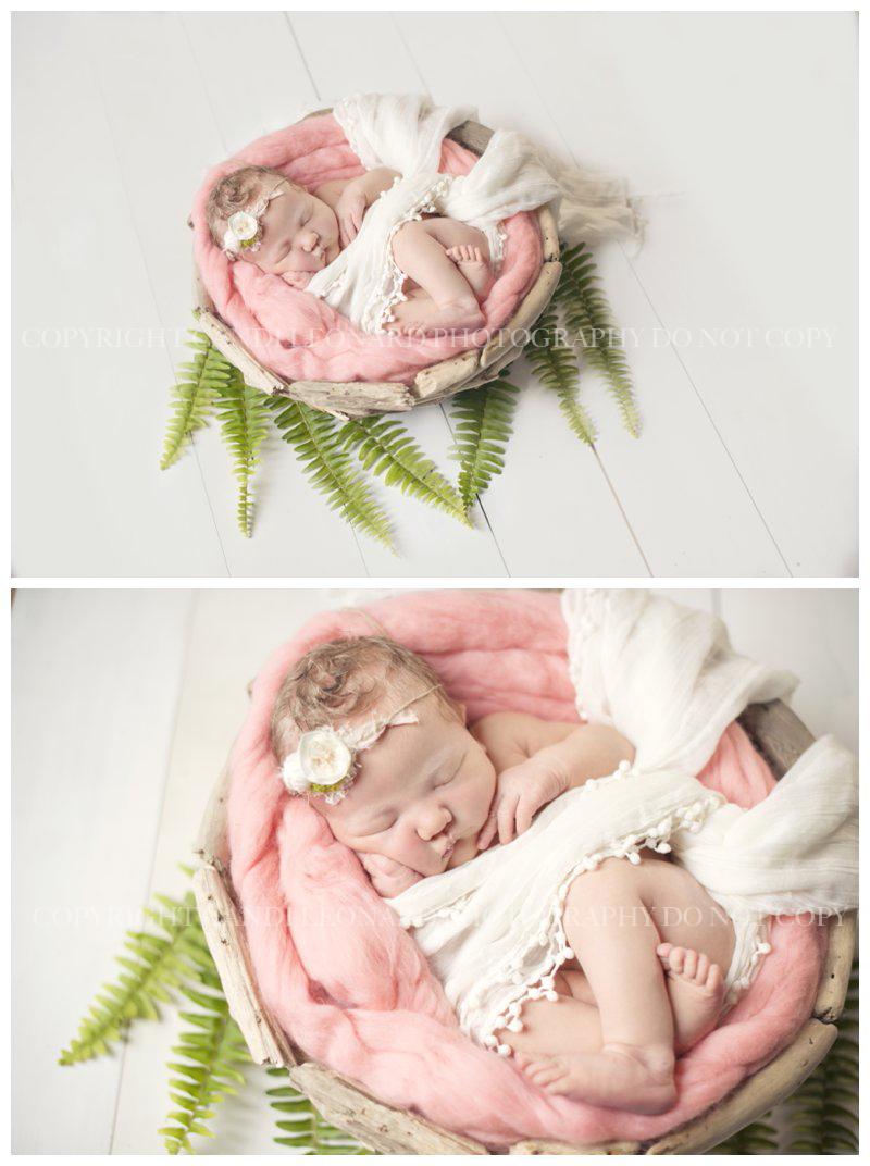 Nature_newborn_asheboro_NC__0248