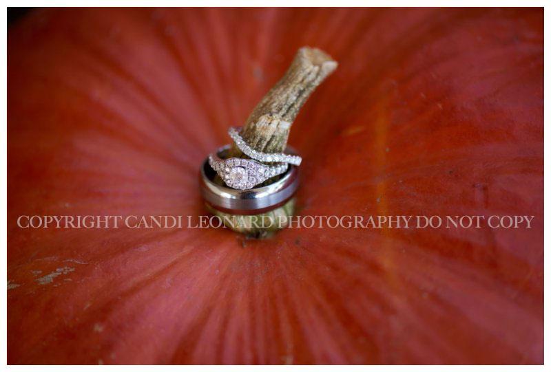DIY_fall_wedding_asheboro_NC__0490