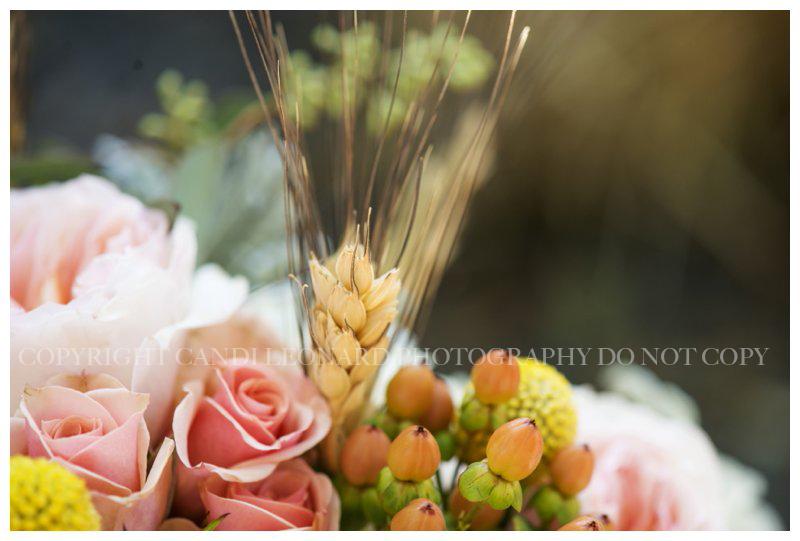 Country_wedding_Asheboro_NC_0527